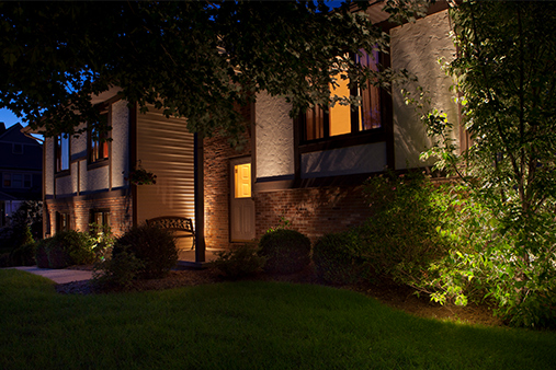 Shadow Landscape Lighting