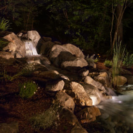 Uplighting, Outdoor Lighting, Landscape, Illumascape Lighting, CT, MA