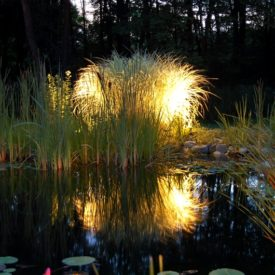Wethersfield CT, Mirror Lighting, Landscape Lighting, Illumascape Lighting
